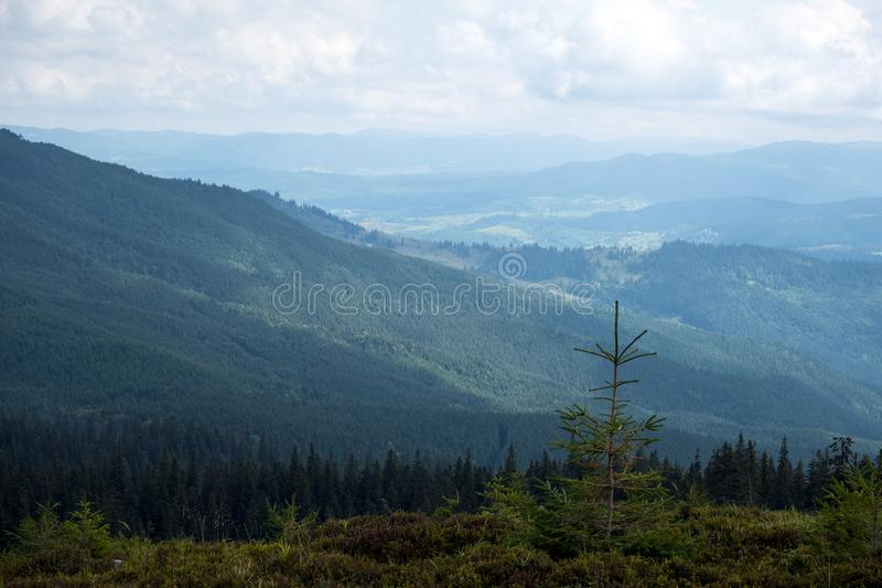 Polonina Dragobrat et les crêtes des montagnes carpathiennes photographie stock