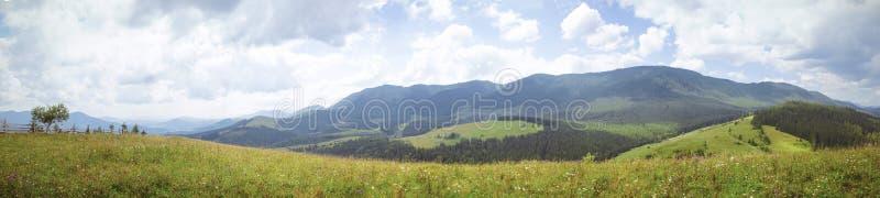 Polonina en las montañas fotos de archivo libres de regalías