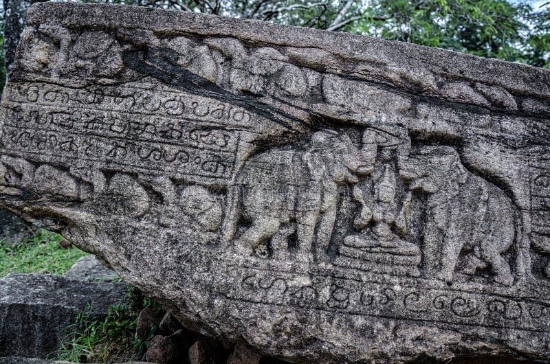 Polonnaruwa ruïneert elefant stock foto's