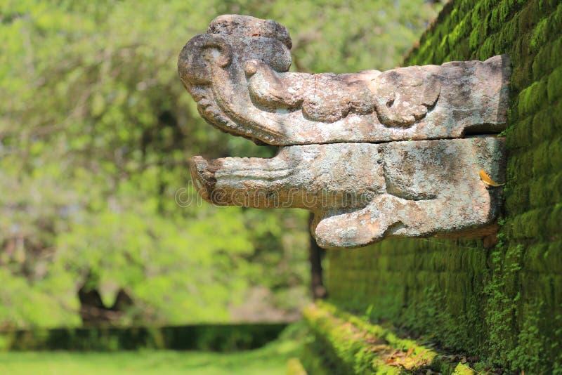 Polonnaruwa-Ruine lizenzfreie stockfotos