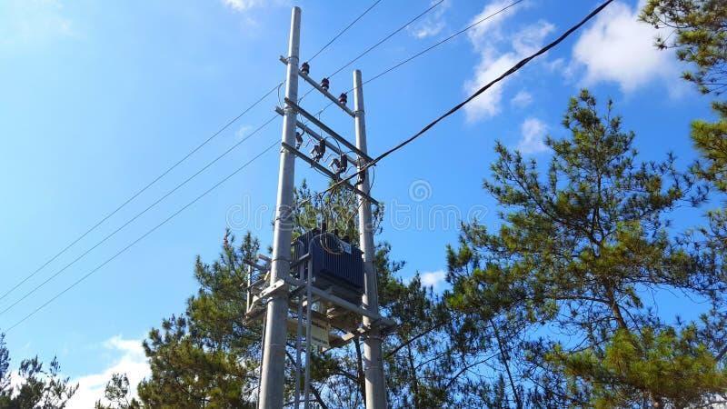 Polos elétricos com cabos, distribuição da eletricidade às casas e propriedades industriais imagens de stock