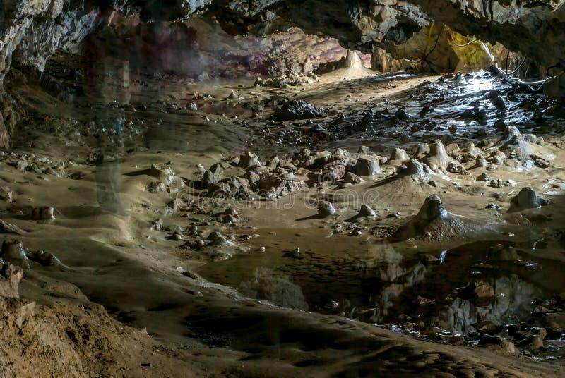 Polovragi grotta i Rumänien royaltyfri fotografi