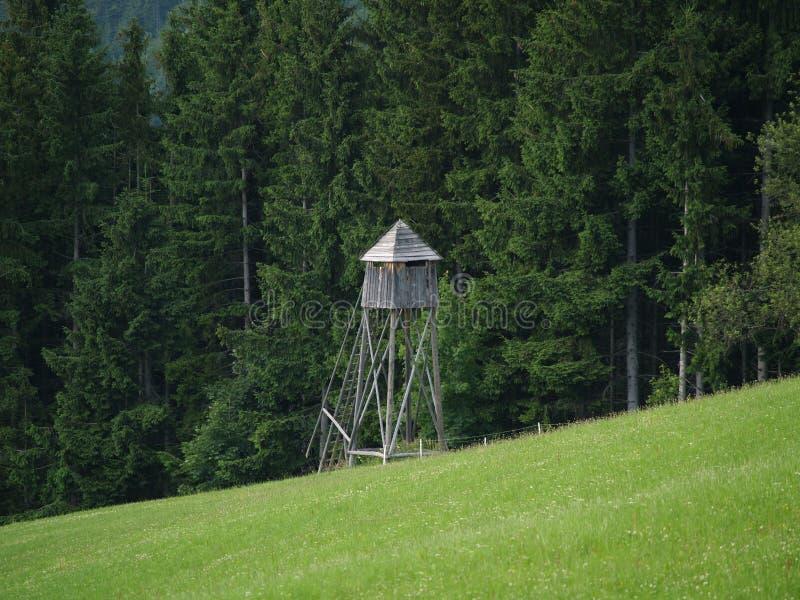 polowanie wieży obrazy stock