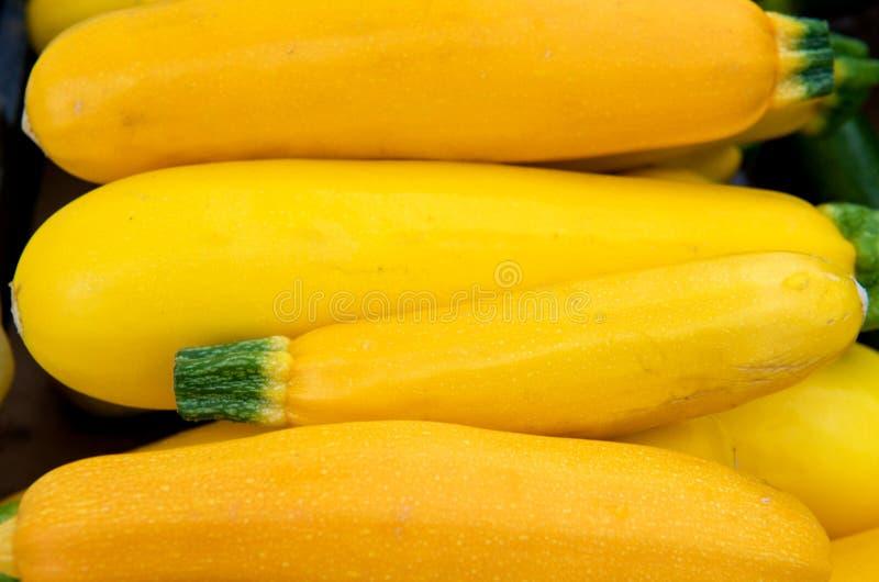 Polpa amarela fotos de stock
