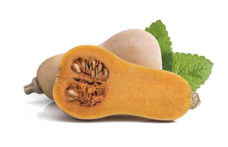 Polpa de butternut fresca isolada em um branco foto de stock royalty free