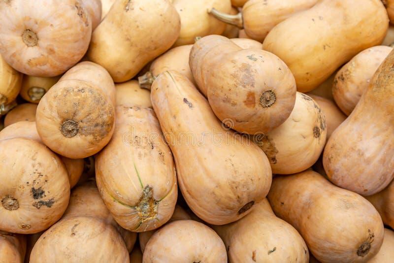 Polpa de Butternut inteira em um mercado dos fazendeiros fotos de stock