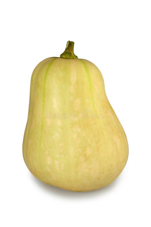 Polpa de Butternut isolada no branco foto de stock royalty free