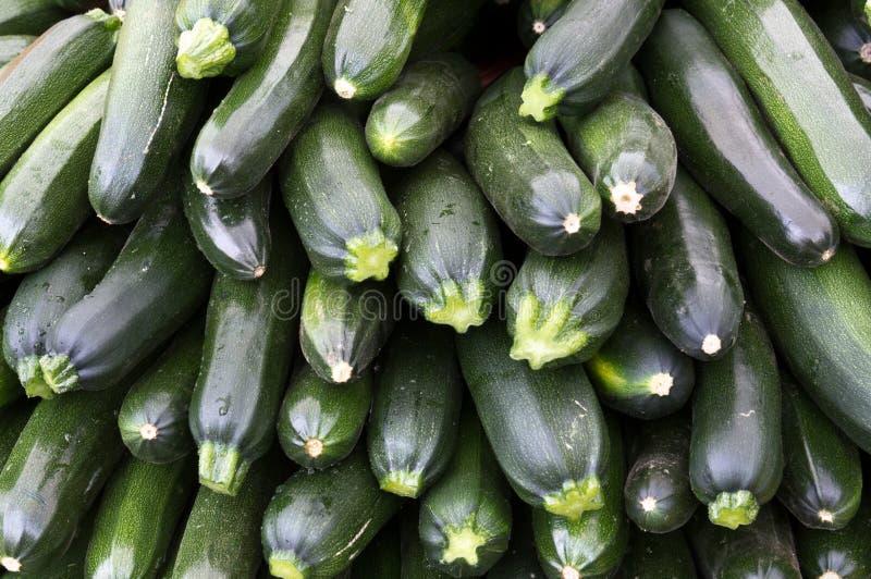 Polpa do Zucchini no indicador no mercado do fazendeiro foto de stock royalty free