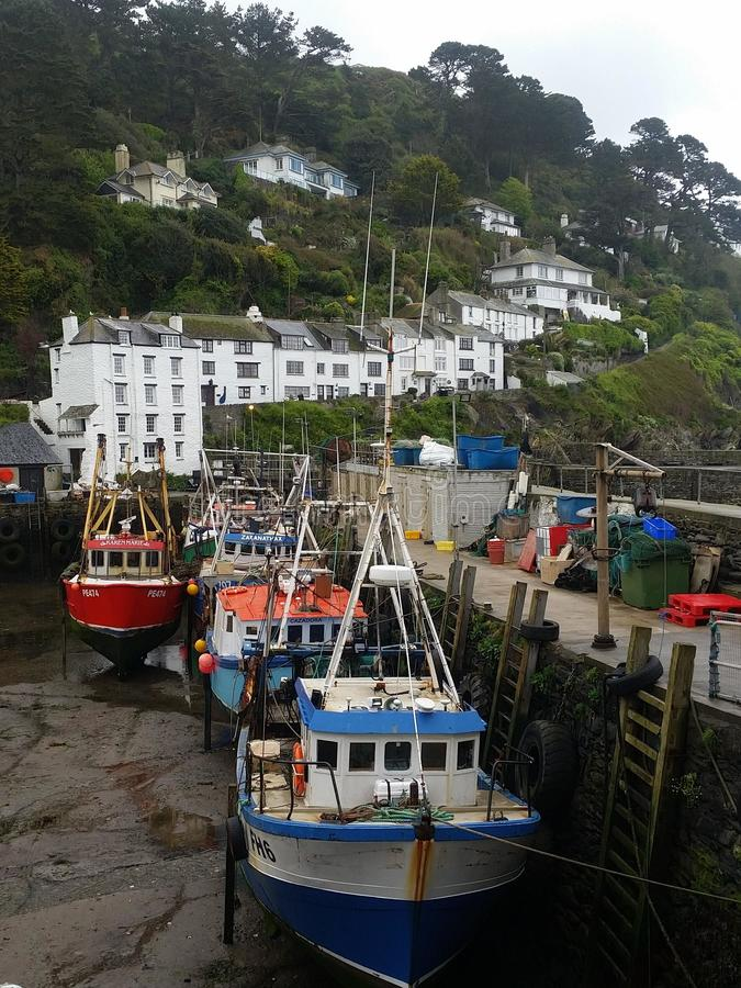Polperro Harbour cornwall. Little Robyn Red breast royalty free stock photo
