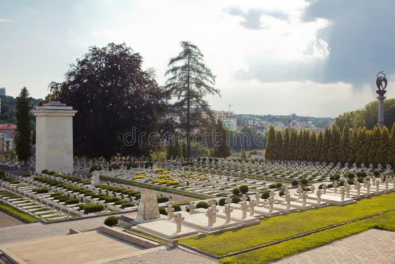 Polscy gravestones przy Lychakiv cmentarzem w Lviv, Ukraina fotografia royalty free