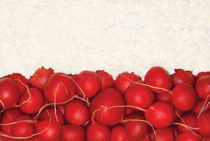Polsk flagga som göras av mat royaltyfria bilder