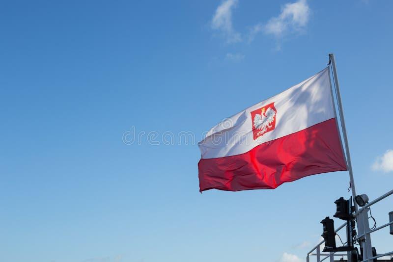 Polska flaga fotografia stock