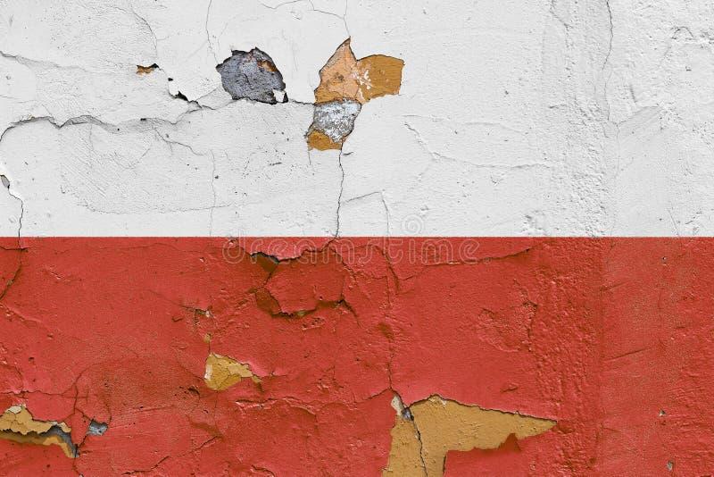 Polska flaga malująca na wietrzejącej betonowej ścianie zdjęcia royalty free