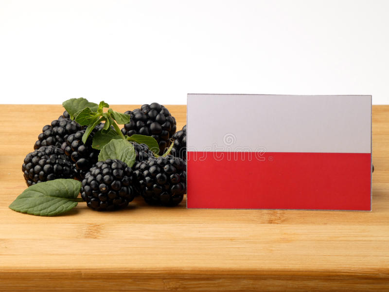 Polska flaga na drewnianym panelu z czernicami odizolowywać na wh zdjęcie royalty free