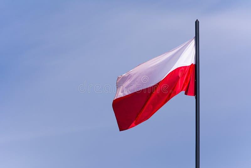 Polska flaga na nieba tle zdjęcie stock
