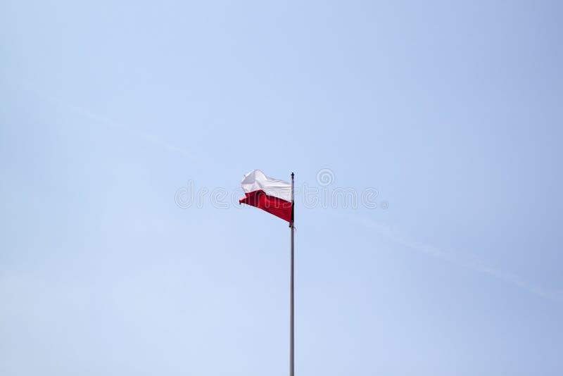Polska flaga na niebieskiego nieba tle obrazy royalty free
