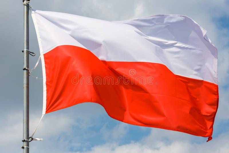 Polska flaga na niebieskiego nieba tle fotografia stock