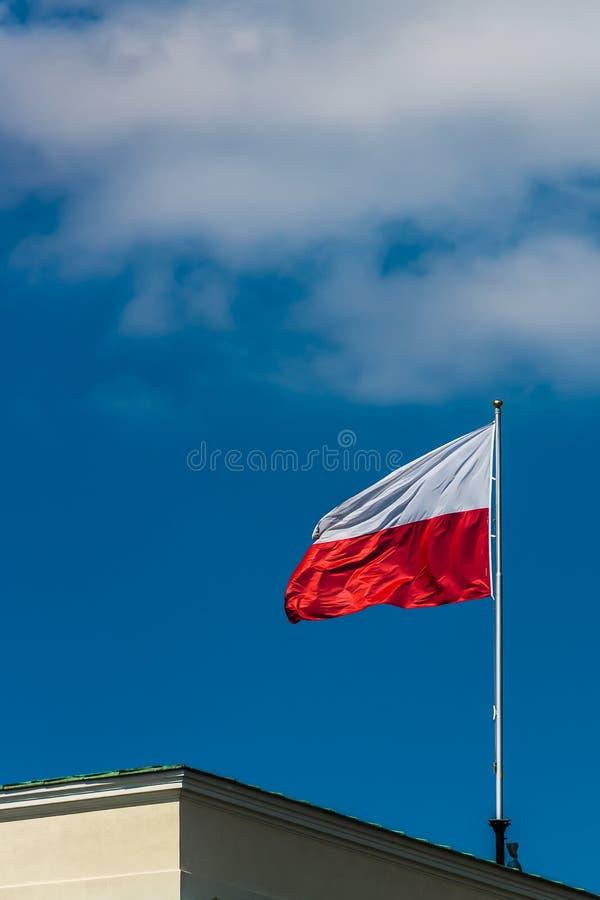 Polska flaga państowowa obraz stock