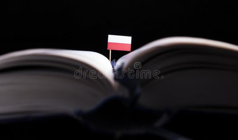 Polska flaga po środku książki Wiedza c i edukacja obraz stock