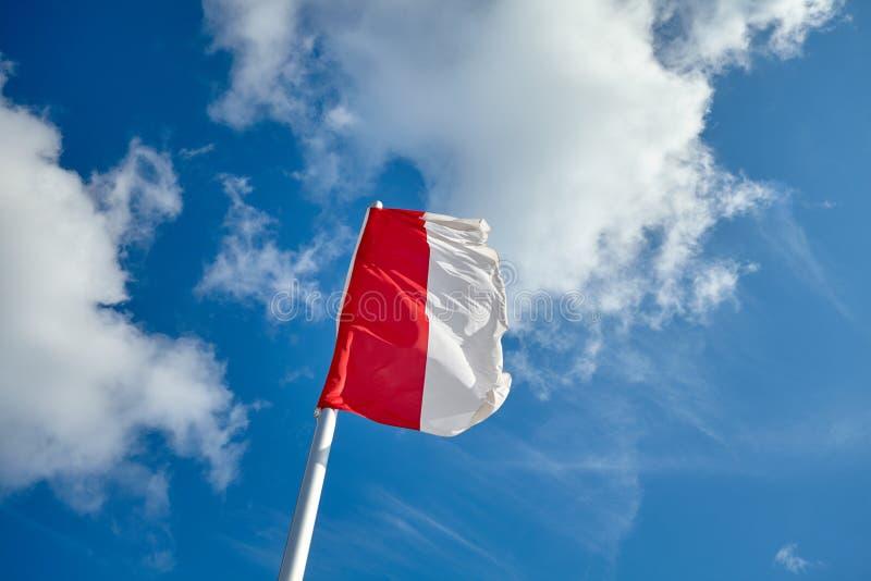 Polska flaga przeciw niebieskiemu niebu zdjęcia royalty free