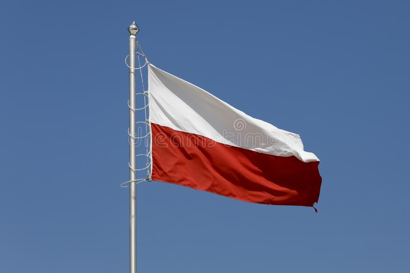 Polska flaga przeciw tłu niebo fotografia royalty free