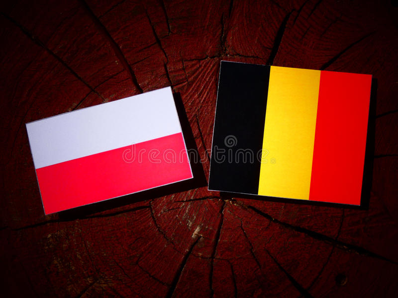 Polska flaga z belg flaga na drzewnym fiszorku odizolowywającym obrazy stock