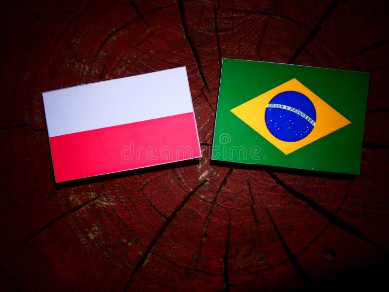 Polska flaga z brazylijczyk flaga na drzewnym fiszorku odizolowywającym fotografia stock