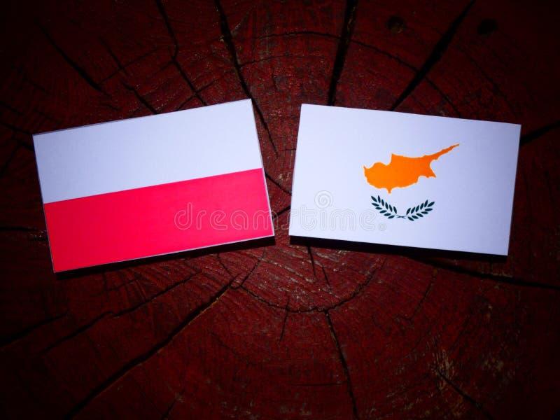 Polska flaga z cypryjczyk flaga na drzewnym fiszorku odizolowywającym obraz royalty free