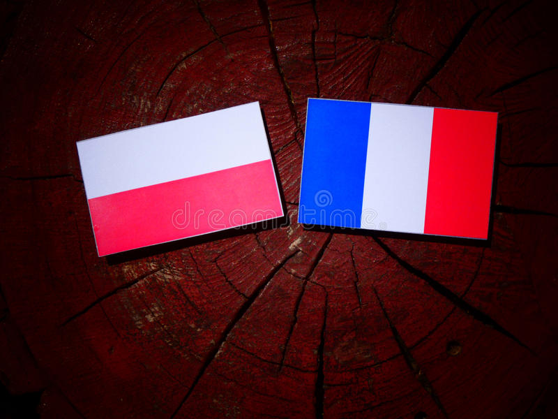 Polska flaga z francuz flaga na drzewnym fiszorku odizolowywającym obrazy royalty free