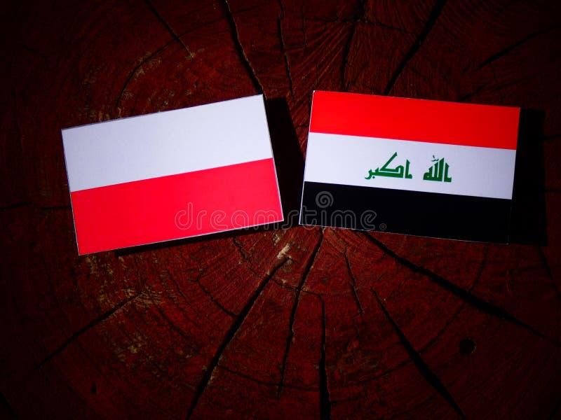 Polska flaga z irakijczyk flaga na drzewnym fiszorku odizolowywającym zdjęcia royalty free