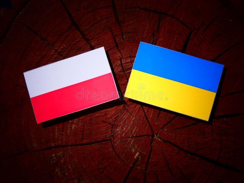Polska flaga z kniaź flaga na drzewnym fiszorku odizolowywającym fotografia royalty free