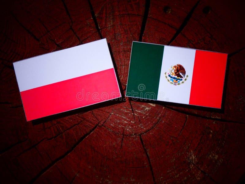 Polska flaga z Meksykańską flaga na drzewnym fiszorku odizolowywającym zdjęcia stock