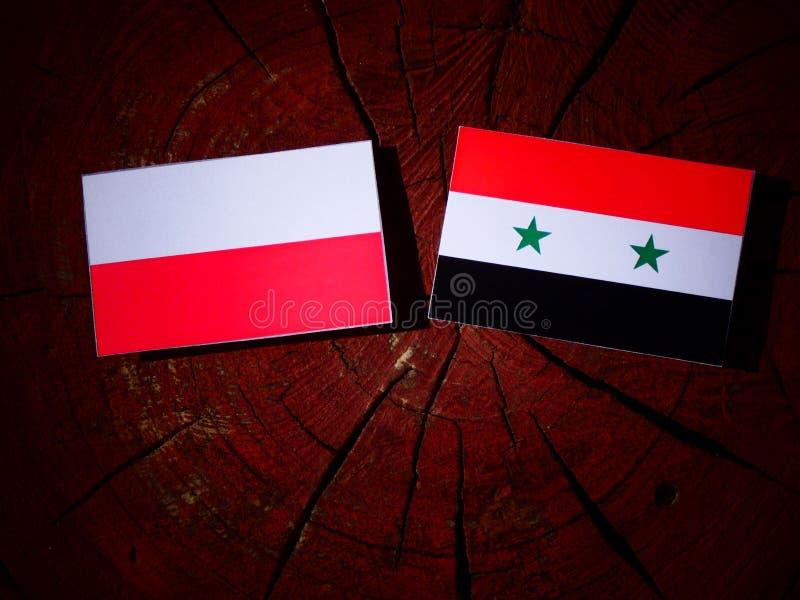 Polska flaga z syryjczyk flaga na drzewnym fiszorku odizolowywającym obrazy stock