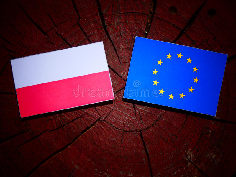Polska flaga z UE flaga na drzewnym fiszorku odizolowywającym obraz stock