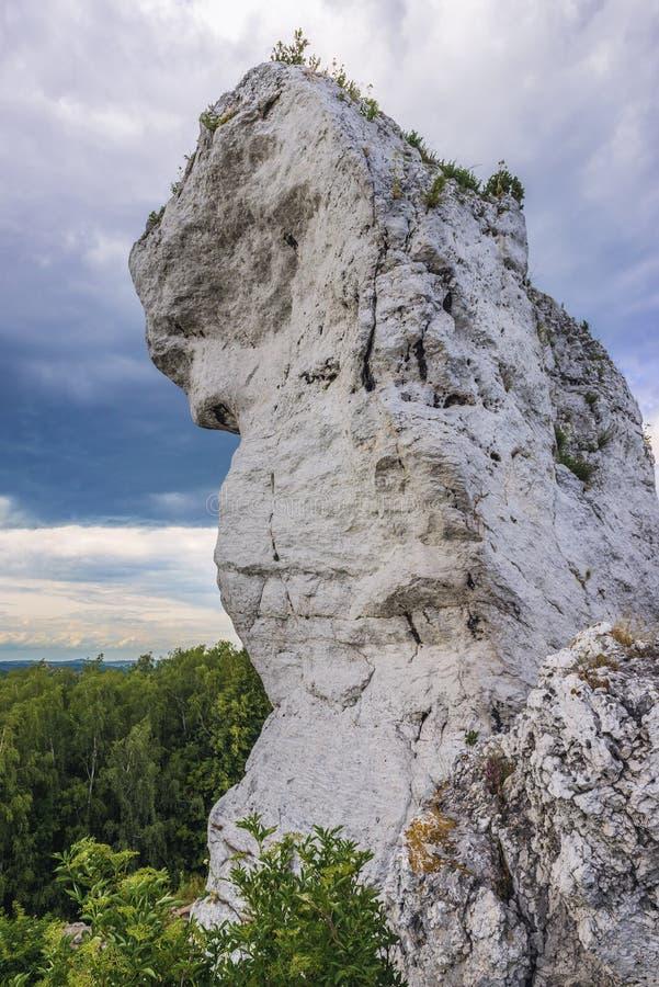 Polski jura region zdjęcie stock