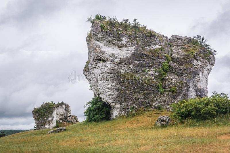Polski jura region fotografia royalty free