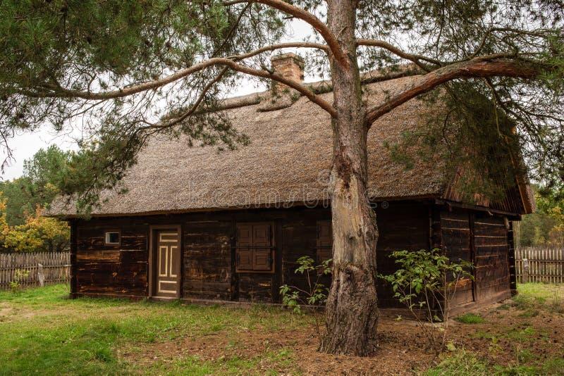 Polskt traditionellt trähus royaltyfri foto