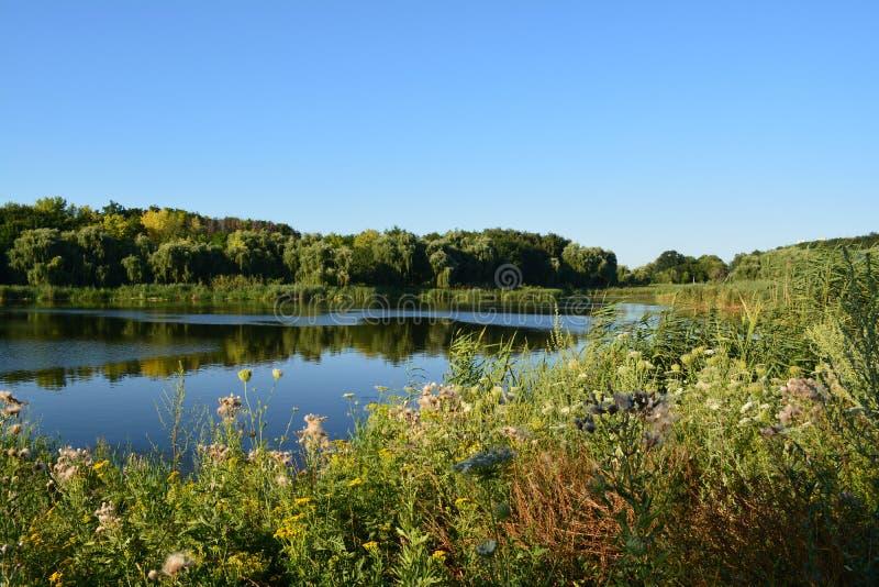 Poltava sjön arkivbild