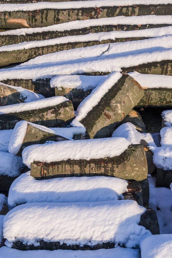 Polter stapelte gefällte Baumstämme im Winter mit Schnee, helle SU lizenzfreies stockbild