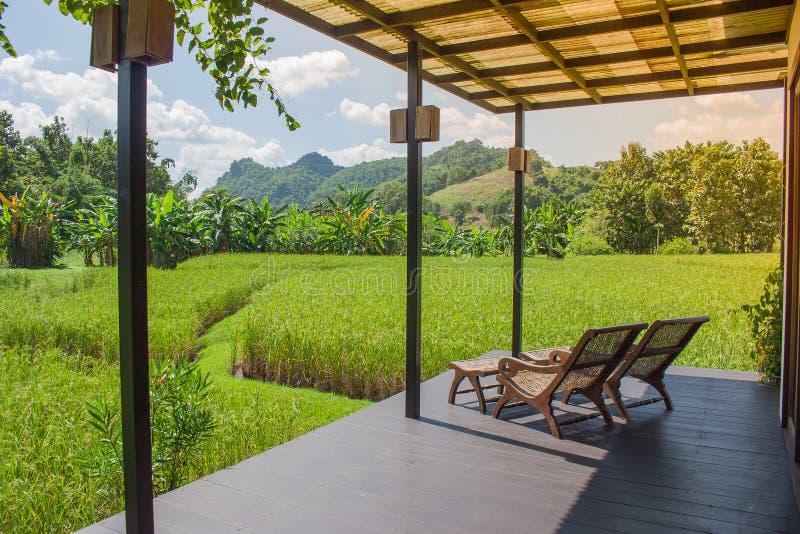 Poltrona di legno sul terrazzo con il giacimento del riso ed il fondo verdi della montagna alla campagna fotografia stock