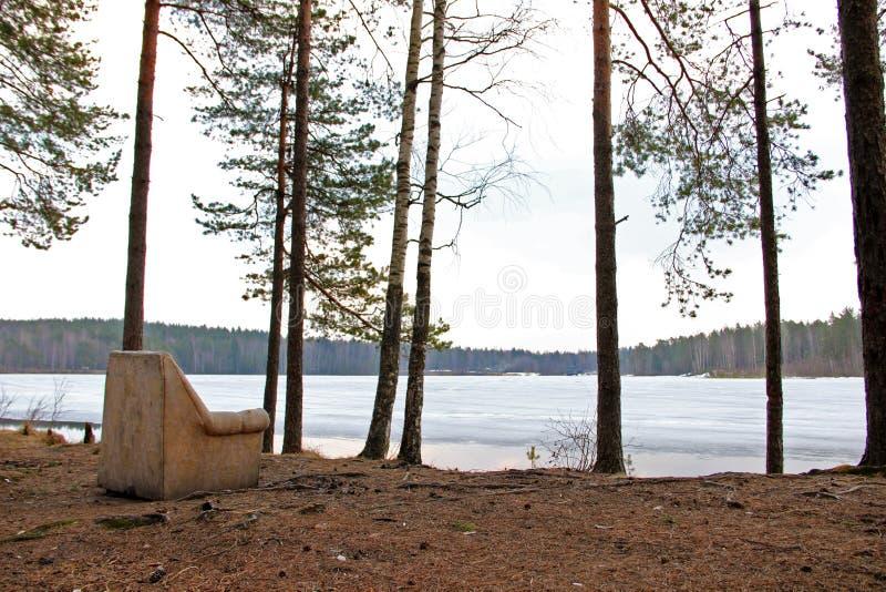 A poltrona velha na floresta na costa do lago foto de stock royalty free