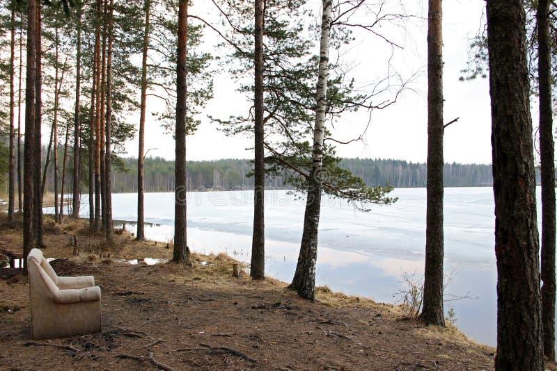 A poltrona velha na floresta na costa do lago fotografia de stock royalty free