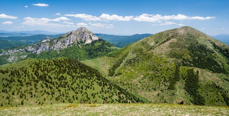 Poludnovy grun, Maly Rozsutec, Velky Rozsutec和Stoh小山在Mala Fatra山在斯洛伐克 免版税库存图片