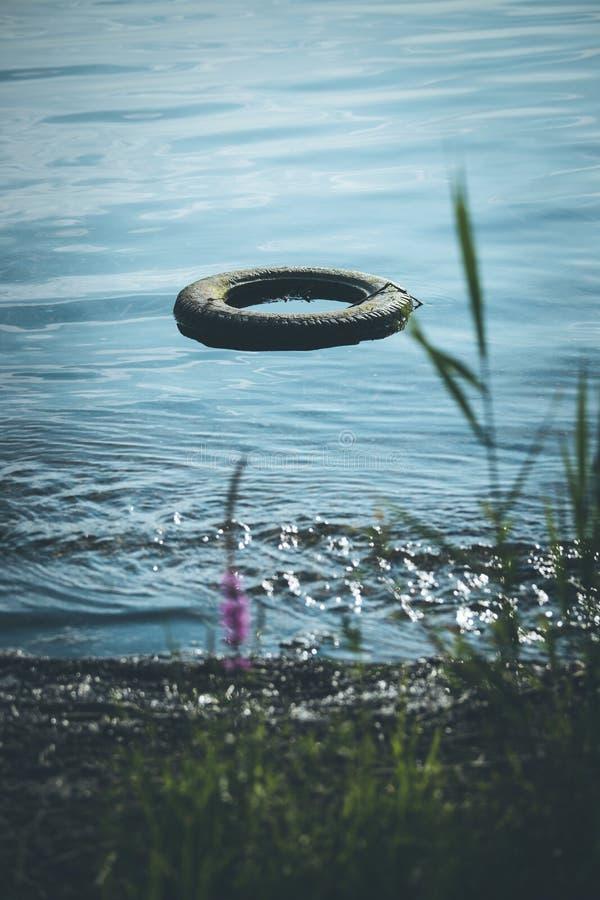 Poluição ambiental: pneu velho está deitado na água, linha de costa fotografia de stock