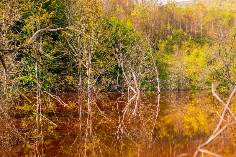 A poluição de água com ferro e a mina residual do tanoeiro minam, Romênia imagens de stock royalty free
