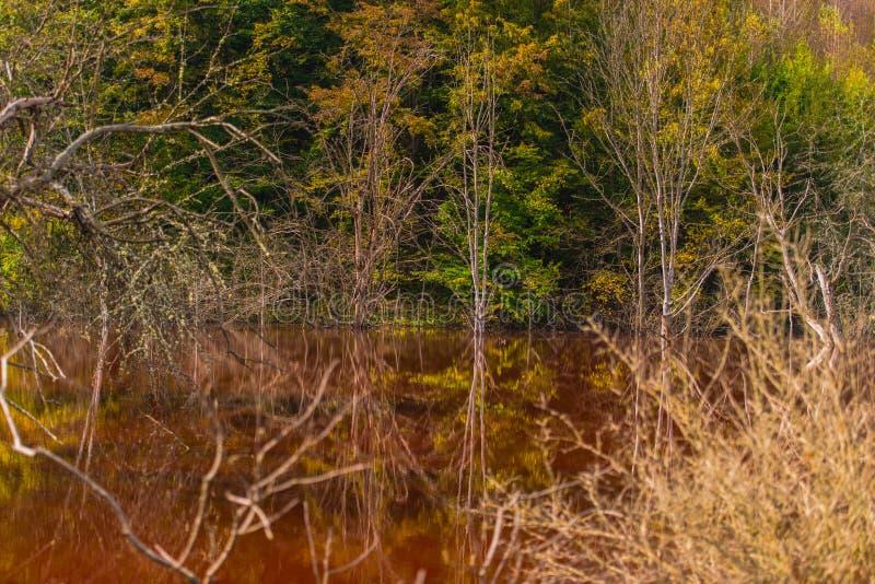 A poluição de água com ferro e a mina residual do tanoeiro minam, Romênia fotos de stock royalty free