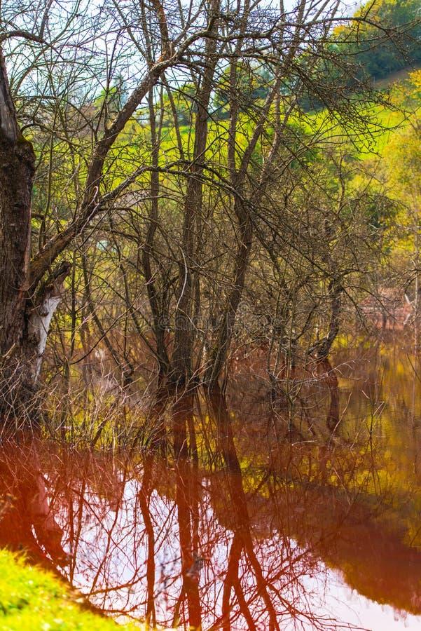 A poluição de água com ferro e a mina residual do tanoeiro minam, Romênia fotografia de stock royalty free