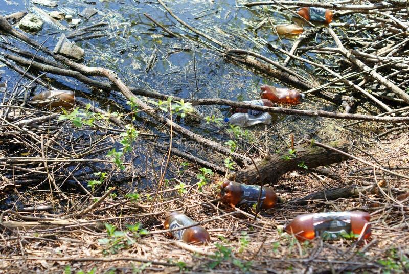 Poluição do lago fotos de stock royalty free
