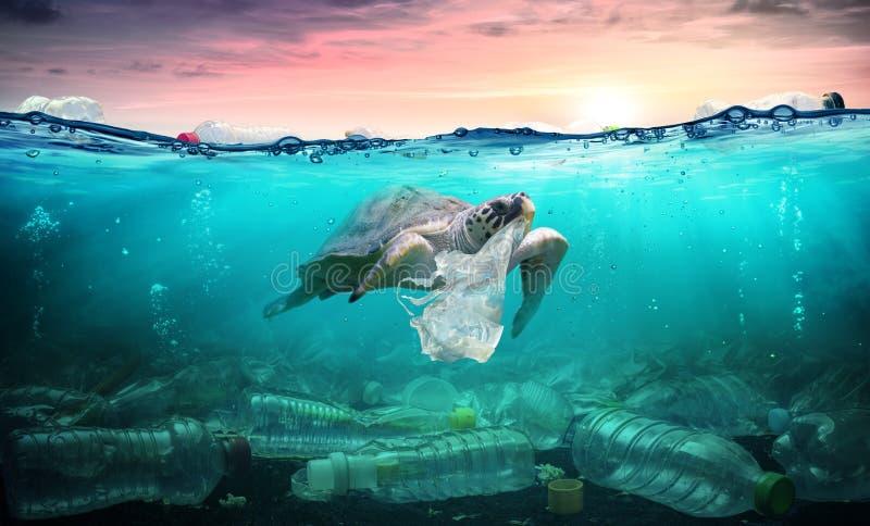 Poluição plástica no oceano - a tartaruga come o saco de plástico foto de stock
