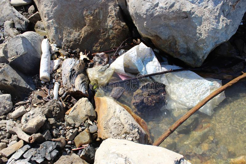Polui??o ambiental Desperdício plástico no mar e na musse fotos de stock